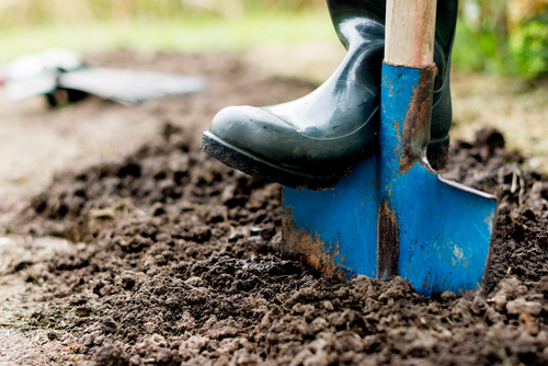 Tips On Hiring A Landscape Contractor