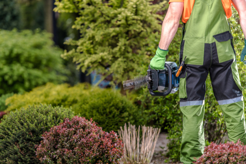What Type Of Services Do Landscapers Provide?